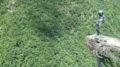 【レポート】2007年夏休み旅行 四国の先っちょ巡り(2日目) 最北端そして道後温泉へ