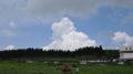 2010年夏休み旅行 2年連続で九州(2日目) 熊本を満喫して鹿児島へ